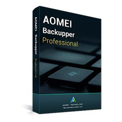 AOMEI Backupper Professional - 2 PC